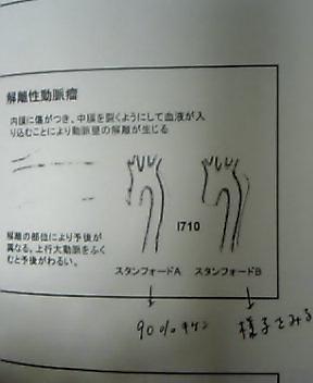 d0008118_188083.jpg