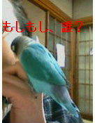 f0126418_145345100.jpg