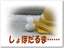 e0027529_1258490.jpg