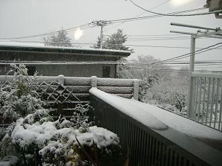 起きたらビックリ!今年二回目の積雪_c0152341_1103011.jpg