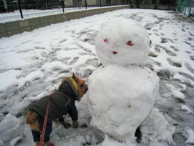 """誰かが雪だるま作ってる~"""""""