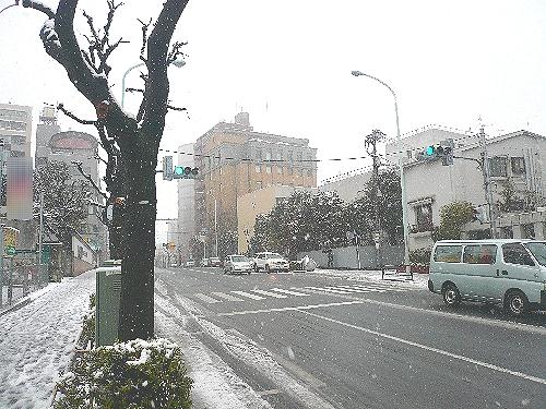 """節分 に 忘れ雪 ☆ 。。。""""福は~内、鬼は~外!""""♡o.+゚。*・。♡o☆*_a0053662_17232965.jpg"""