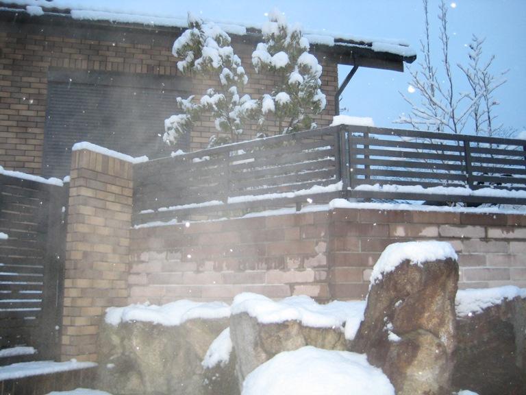雪の日曜日_b0100062_2012838.jpg