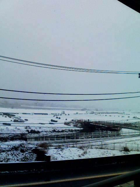 雪だ_e0101868_22222381.jpg