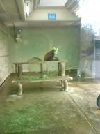 なつおさん 初・動物園♪_f0096569_1932293.jpg
