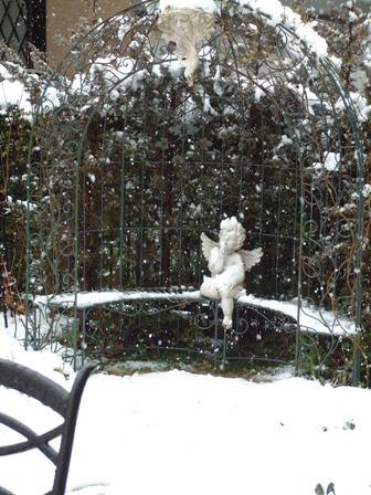 雪ですね♪_f0029571_16495957.jpg