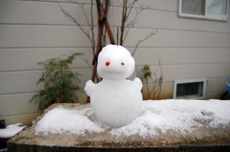 Let it snow! Let it snow! Let it snow!_b0035072_17502611.jpg