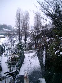 雪 _f0008680_22231285.jpg