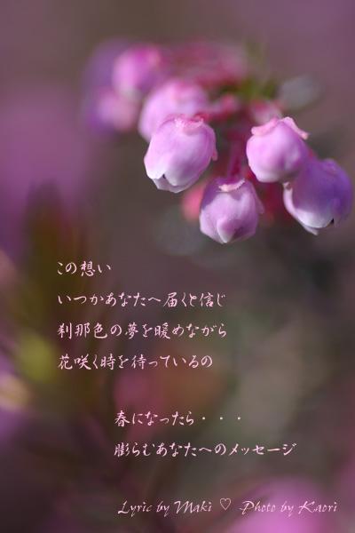 c0085281_2210554.jpg