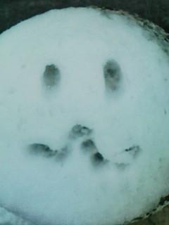 雪だー 雪だー_f0143188_1282050.jpg