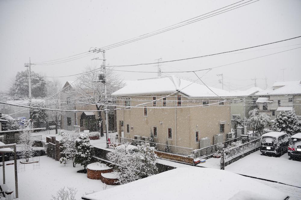 雪_f0144394_8542239.jpg