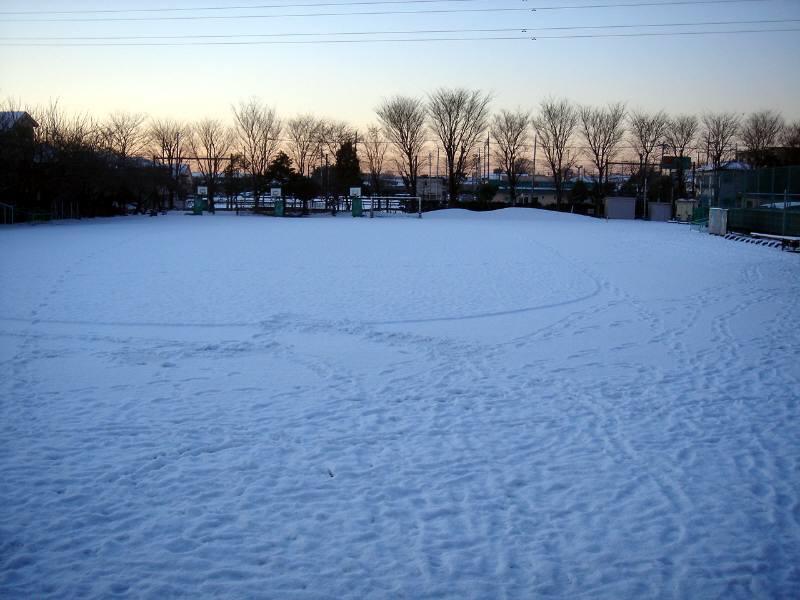 雪に弱い東京人_f0059673_23393335.jpg