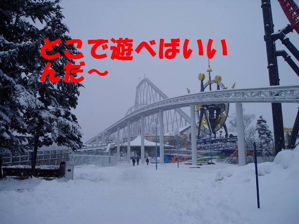 b0059978_21543100.jpg