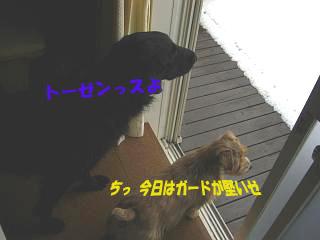 d0043478_0231293.jpg
