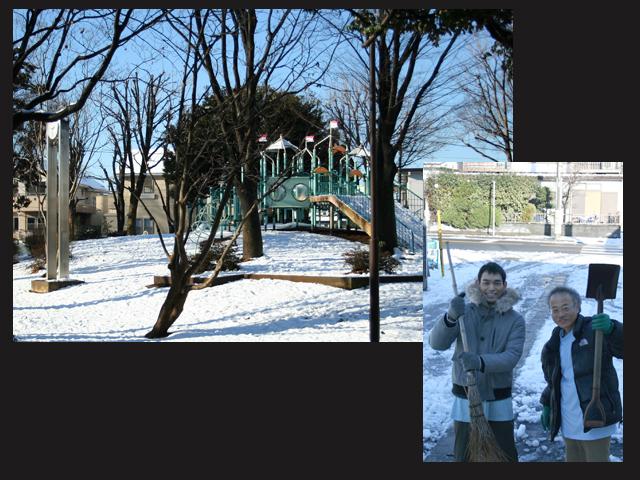 雪。。。。。_a0077288_8464190.jpg