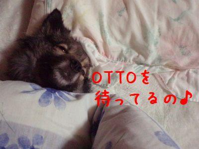 b0008709_1265355.jpg