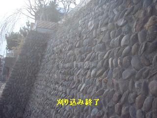 f0031037_177654.jpg