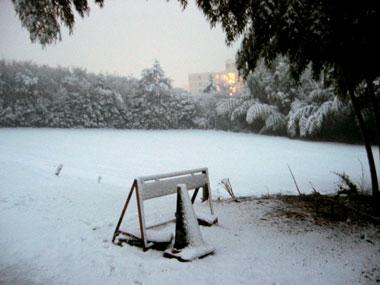 雪刷_f0041351_20291024.jpg