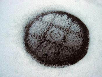 雪刷_f0041351_204415100.jpg