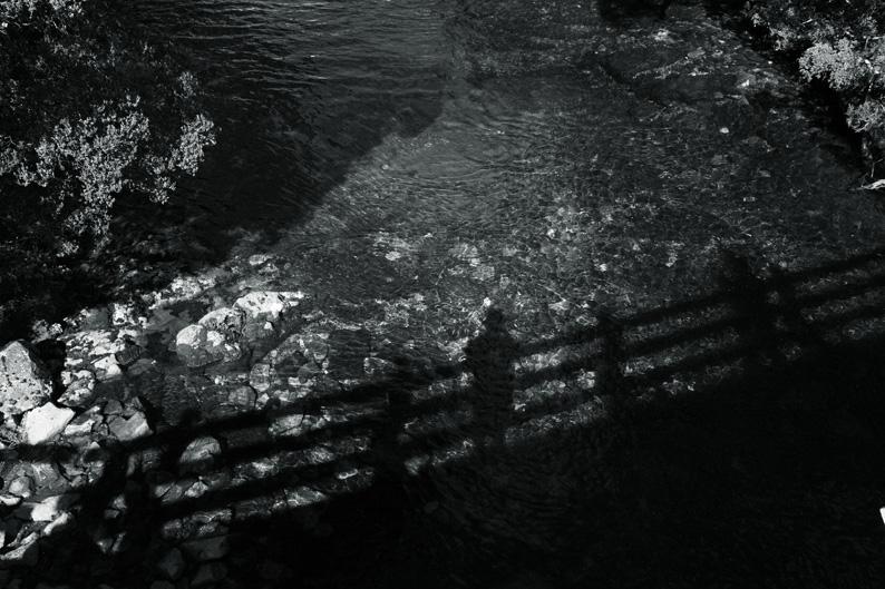 f0137354_19284453.jpg