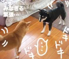 演技俳優_b0057675_2395368.jpg