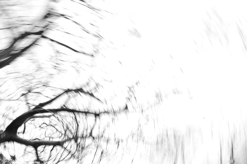 f0113286_2328437.jpg