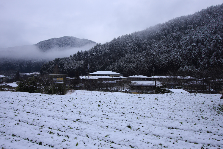 雪の大原_e0051888_20501132.jpg