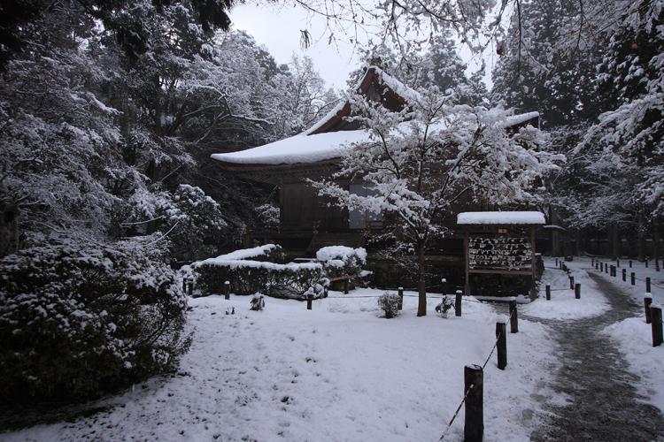 雪の大原_e0051888_21142291.jpg