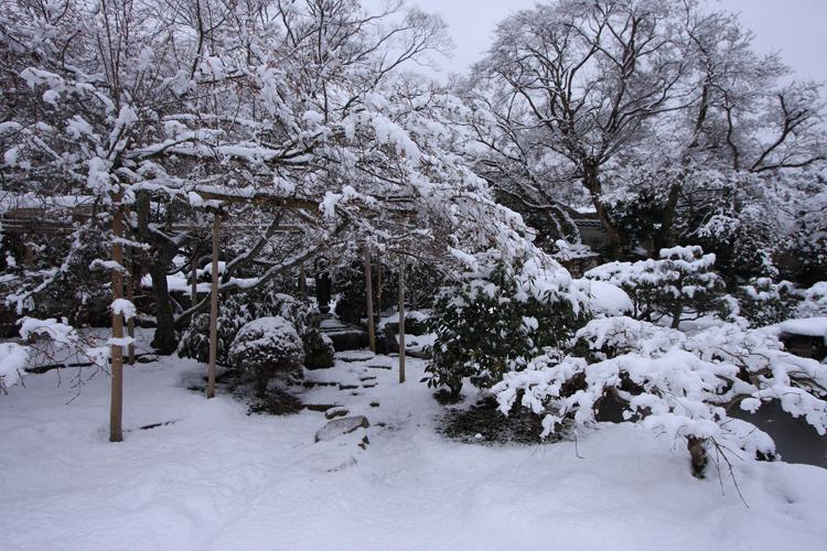 雪の大原_e0051888_2191015.jpg
