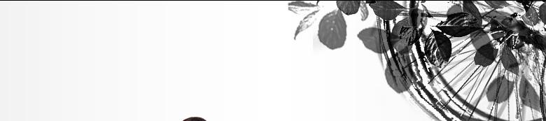 KIRISAME DIARY 椿屋四重奏