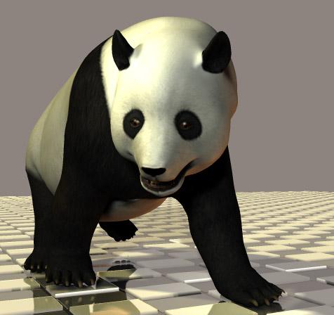 パンダを買う_b0043794_1172731.jpg