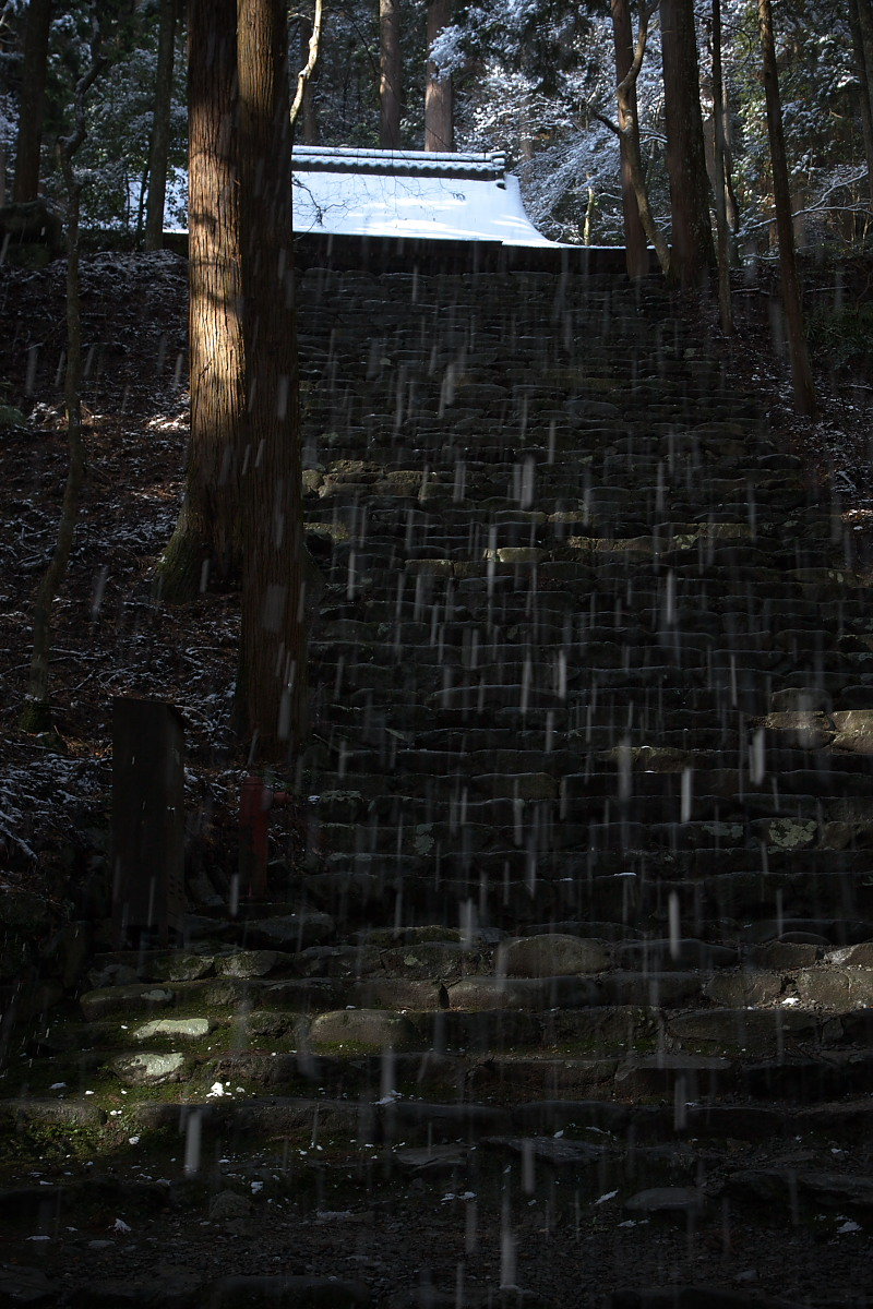 京都スナップ 5 <高山寺>_f0021869_14234639.jpg