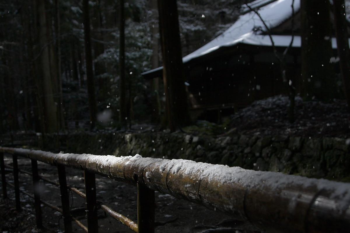 京都スナップ 5 <高山寺>_f0021869_14261053.jpg