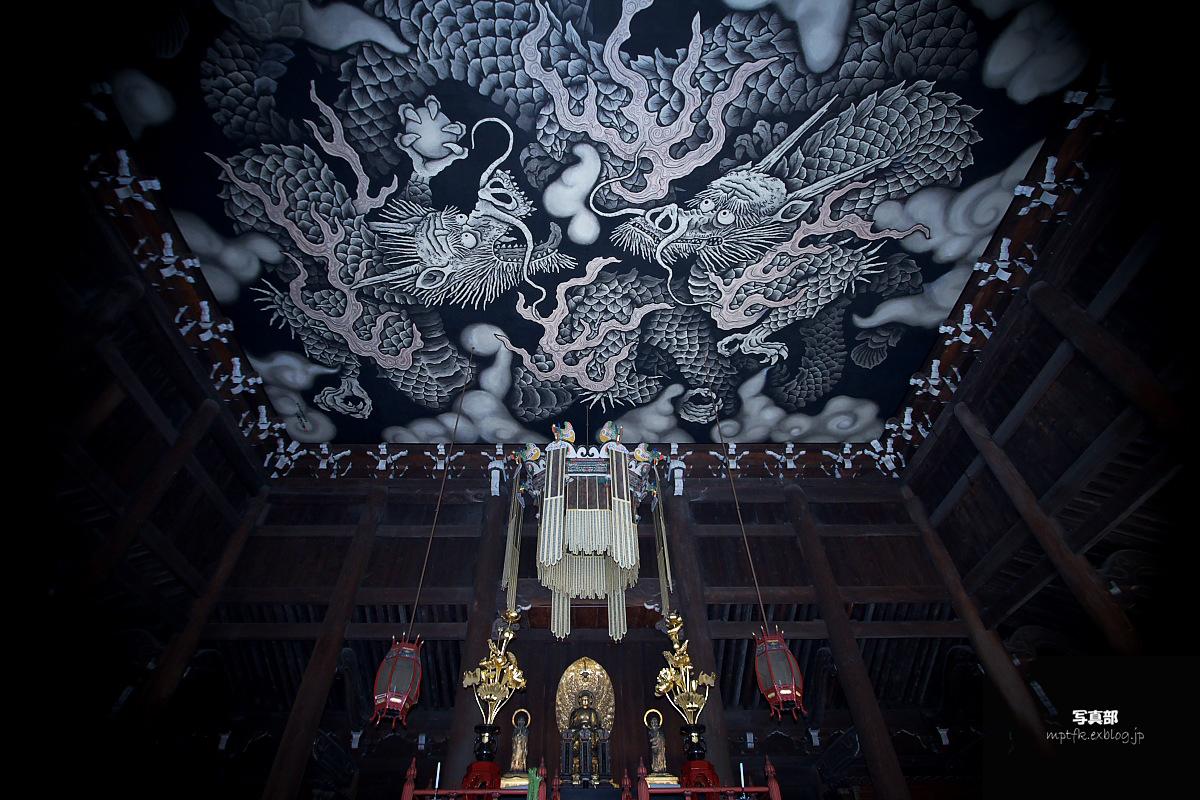 京都スナップ 6 <建仁寺>_f0021869_14494877.jpg