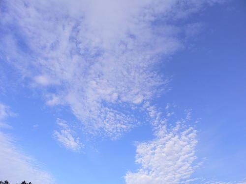 飛騨高山旅行 郡上八幡&ひるがの高原ソフトクリーム_e0009722_14135134.jpg