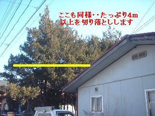 f0031037_2138347.jpg