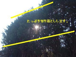 f0031037_21384651.jpg