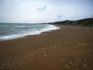 平日の浜地・午後4時半_c0019338_939181.jpg