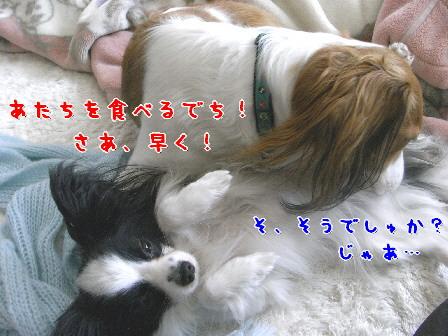 d0013149_847457.jpg
