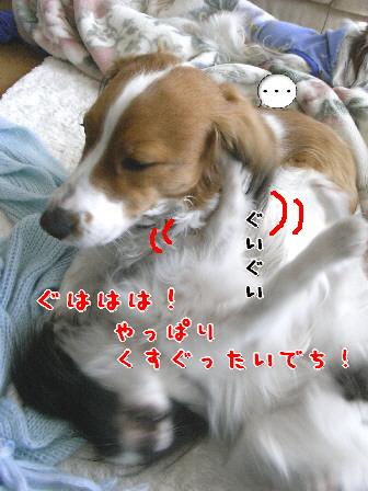 d0013149_8523984.jpg