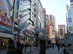 浅草ランチ→アキバ系(写真多数)_f0077051_0404430.jpg