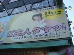 浅草ランチ→アキバ系(写真多数)_f0077051_11350.jpg