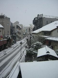 東京に大雪_d0074474_1550170.jpg