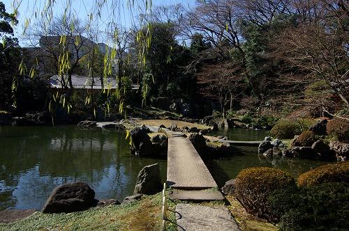 靖国神社の白い鳩_b0019313_18104157.jpg