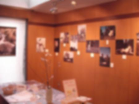 写真展、始まりました_a0020021_23231367.jpg