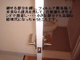 f0031037_15502488.jpg