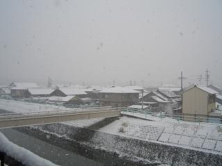 本日は大雪です(>_<)_b0073753_13551784.jpg