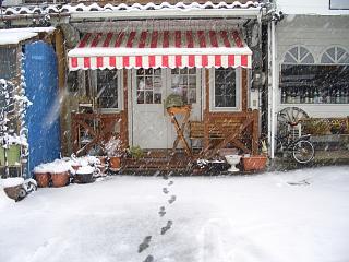 本日は大雪です(>_<)_b0073753_14157100.jpg