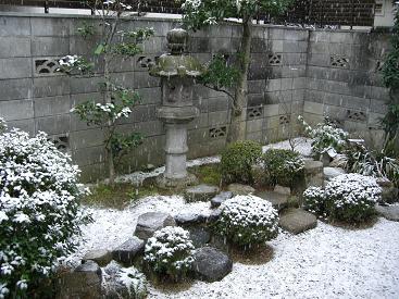 雪は冷たいに決まってます~♪_d0134867_2304162.jpg