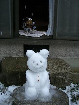 雪は冷たいに決まってます~♪_d0134867_2341649.jpg